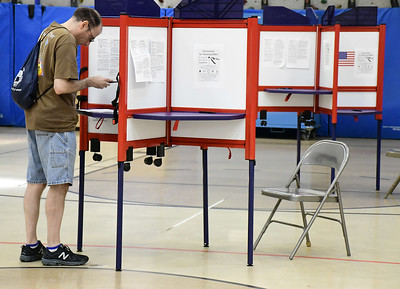 turnout-and-results-from-tuesdays-primary-elections