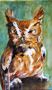wildlife-artists-work-on-display-at-barnes-nature-center