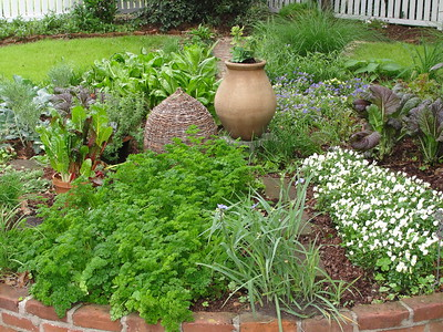 gardening-is-therapy-for-the-mind-and-body