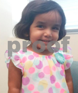 cause-of-death-released-for-3yearold-sherin-mathews-of-richardson