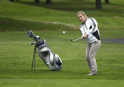 spring-preview-bristol-central-st-paul-lead-area-golf-teams-into-season