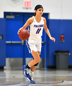 sports-roundup-st-paul-girls-basketball-advances-to-nvl-championship-game-behind-gonzalezs-27-points
