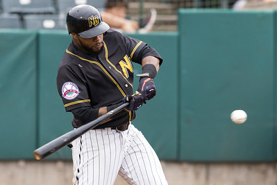 new-britain-bees-split-doubleheader-versus-southern-maryland-blue-crabs