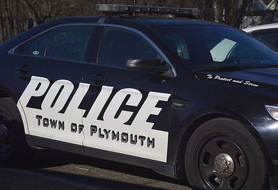 3-dogs-dead-following-attack-on-woman-in-terryville