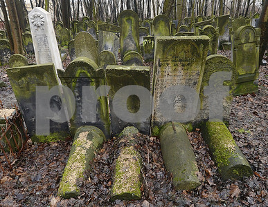 poland-donates-large-sum-to-preserve-warsaw-jewish-cemetery