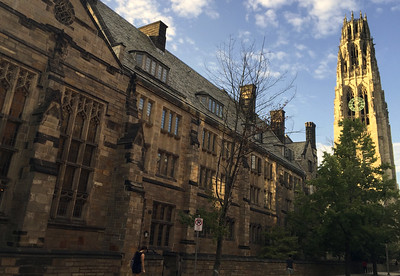 top-colleges-including-yale-see-record-application-numbers-amid-pandemic