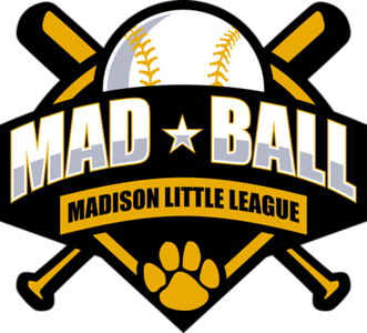 playing-in-bristol-madison-little-league-baseball-looking-to-get-connecticut-back-into-world-series
