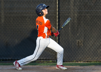 city-series-game-between-mccabewaters-and-edgewood-little-league-postponed