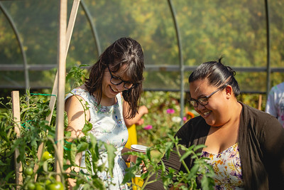 residents-can-visit-local-gardens-at-the-annual-garden-crawl-fundraising-event-heres-how-to-take-part