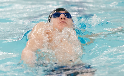 area-boys-swimming-and-diving-teams-conclude-seasons-at-state-open