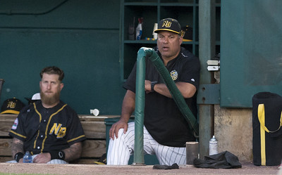 new-britain-bees-bolster-pitching-staff-for-final-stretch-of-regular-season