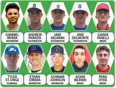 2019-allherald-baseball-team-plenty-of-team-individual-success-for-these-diamond-stars