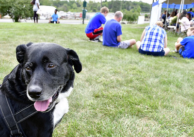 pets-find-their-forever-home-during-the-clear-the-shelters-event-at-the-connecticut-humane-society-in-newington