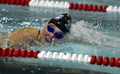 bristol-eastern-swimmer-demarest-has-chance-for-titles-in-class-m-state-finals