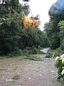 it-was-a-hellish-night-many-in-bristol-still-without-power-as-city-continues-cleanup-from-tropical-storm