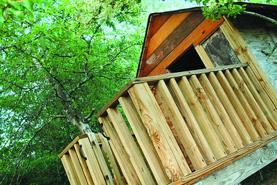 fouryearold-texas-boy-dies-after-treehouse-falls-on-him